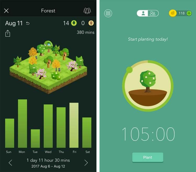 forest screen shot