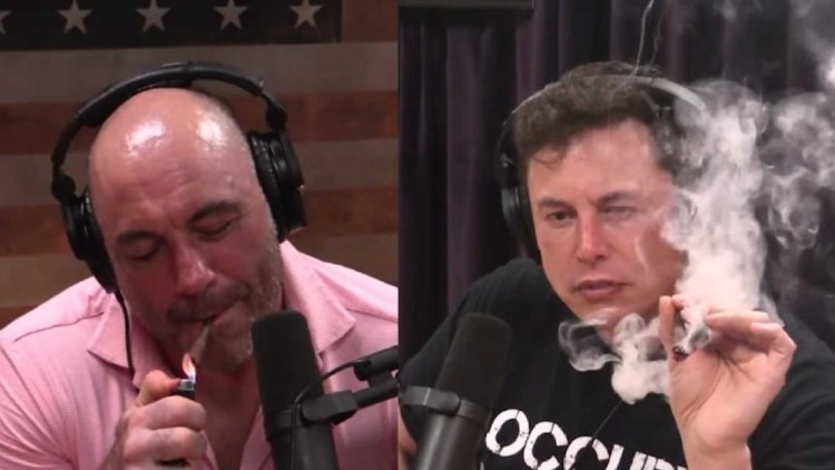 musk joe rogan md