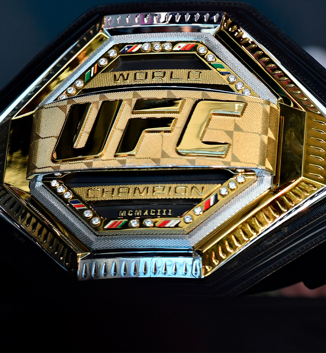 ufc heavyweight champion mobile