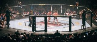 mixed martial arts hero