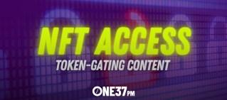 nft access hero