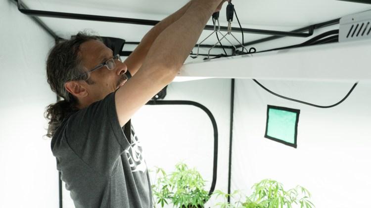 homegrown cannabis co kushman indoor tent light hang