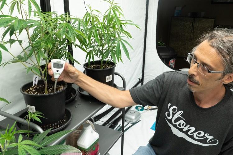 homegrown cannabis hacks 0004 homegrown cannabis co kushman ph test soil 02