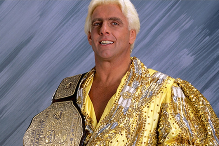 best wcw fighters 0000 flair