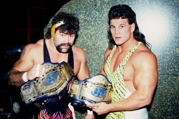 best wcw fighters 0002 steiners