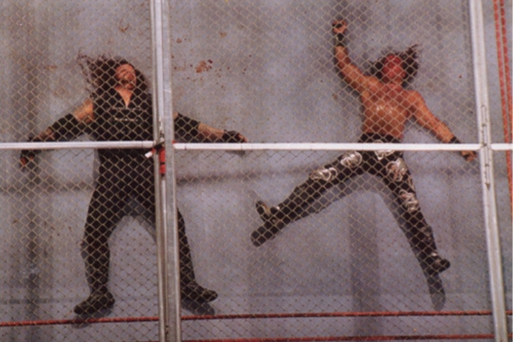 hell in a cell matches 0004 hbktaker