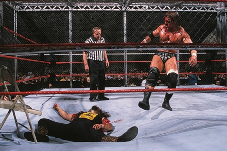 hell in a cell matches 0007 triplecactus