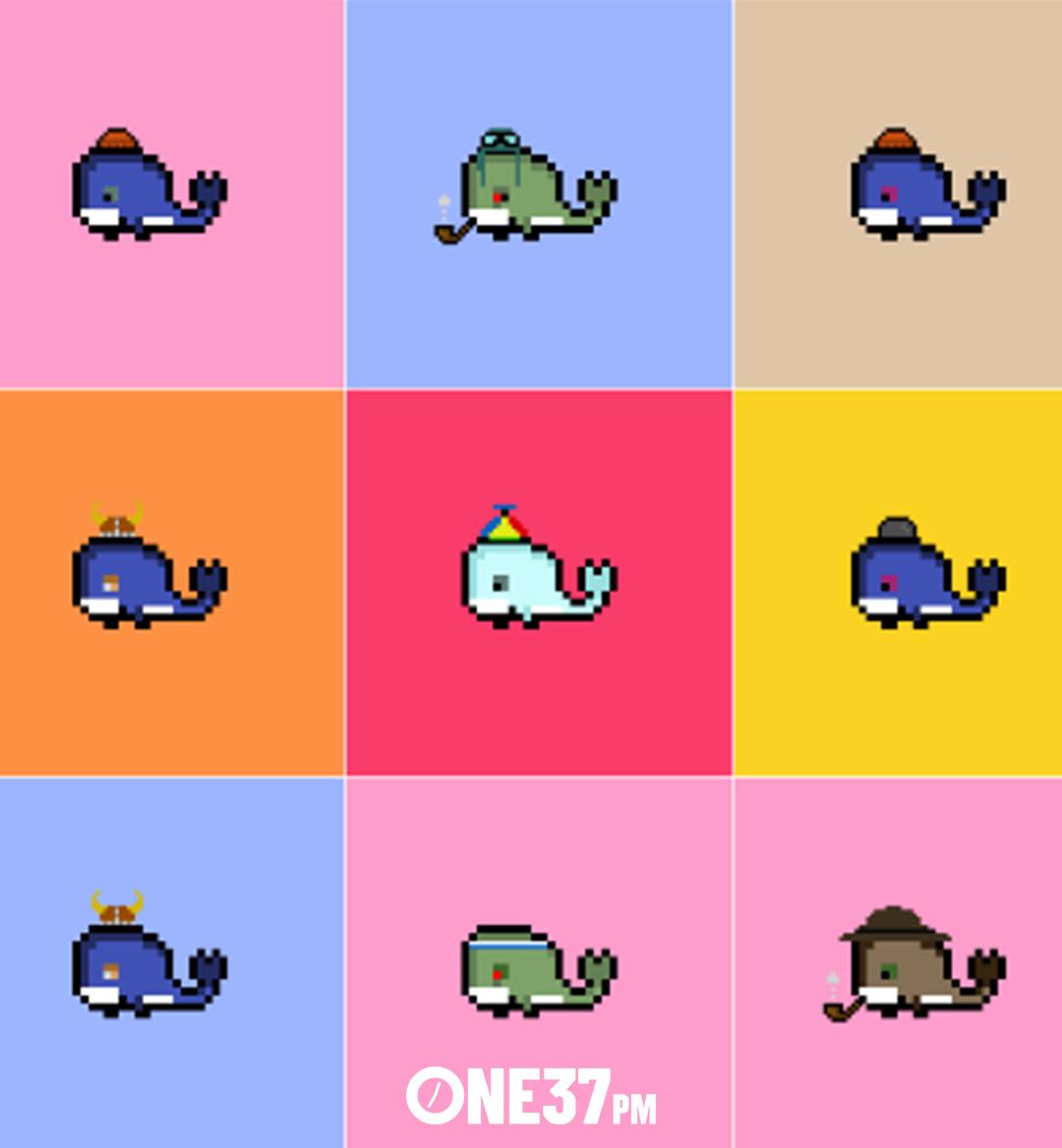 weird whales nft mobile