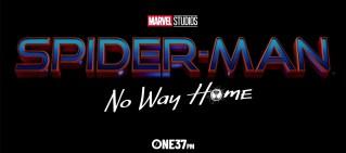 spider man no way home review hero